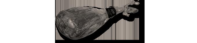 Paletilla